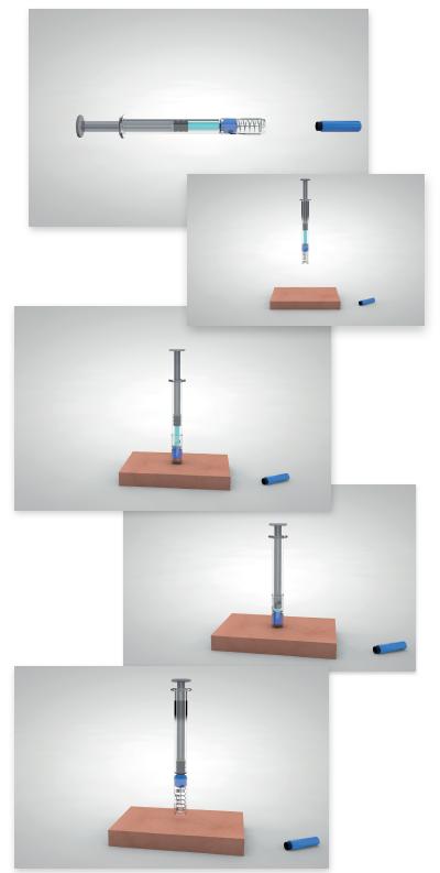Biocorp Newguard injection steps RNS