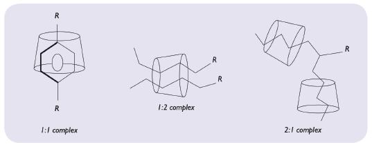 Figure 5: Representation of molecular encapsulation possibilities.
